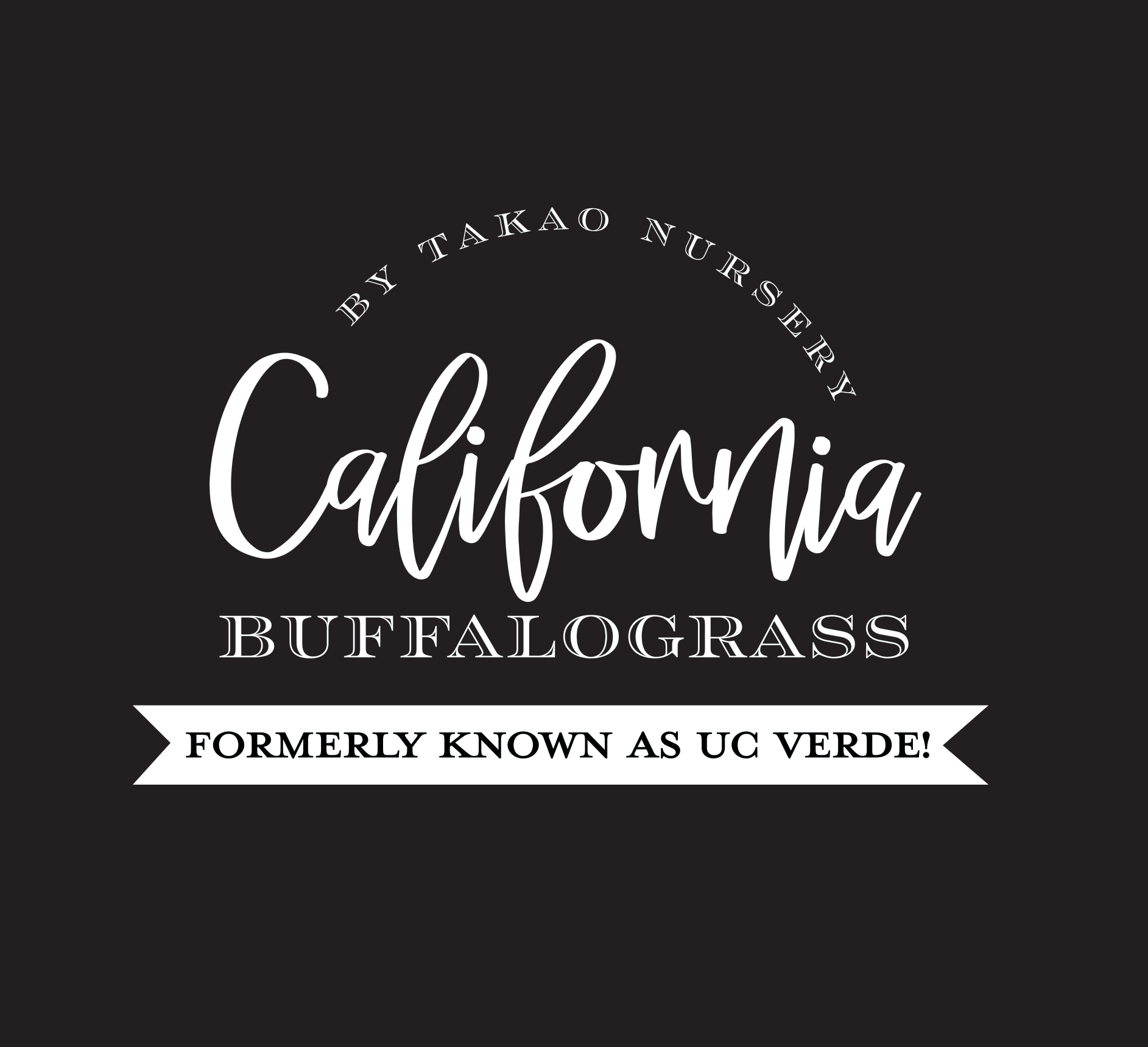 California Buffalograss, formerly UC Verde